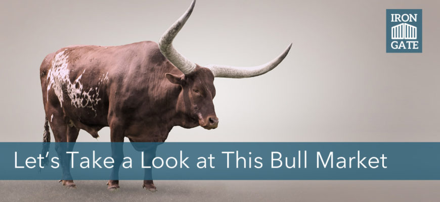 Putting the Bull Market Into Perspective